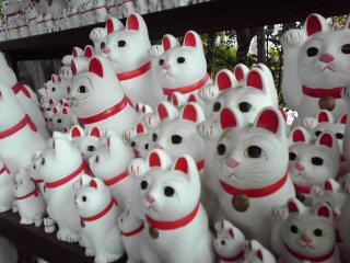 招き猫めぐり(豪徳寺)